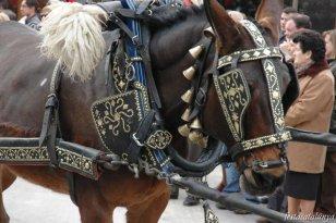 Sant Cugat del Vall�s - Festa de Sant Antoni