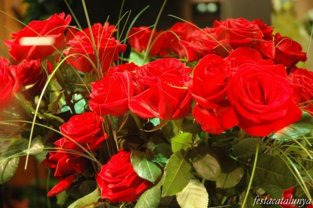 Vilagrassa - Diada de Sant Jordi