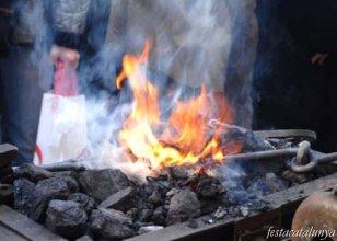 Sant Jaume dels Domenys - Festa Vi Jove i Oli Novell