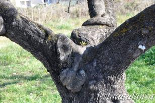Sant Llorenç d'Hortons - Nucli antic