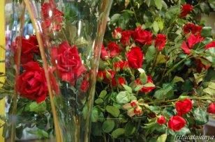 Sant Cugat Sesgarrigues - Diada de Sant Jordi