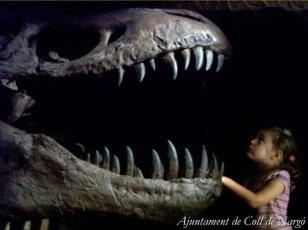 Coll de Nargó - Museu dels Dinosauris (Foto: Ajuntament del Coll de Nargó)
