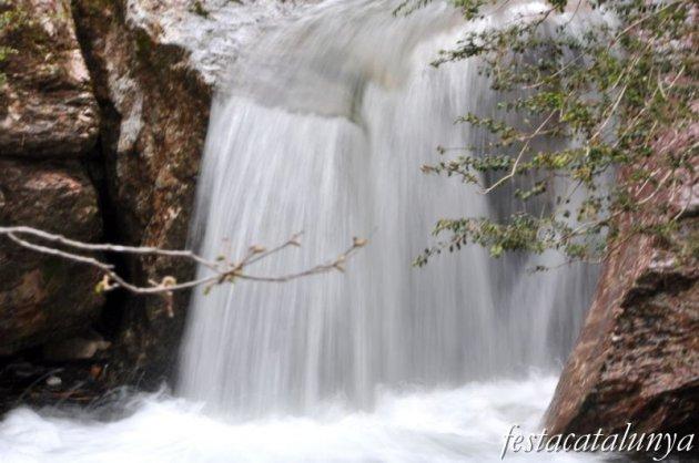 Castellar de n'Hug - Fonts del riu Llobregat