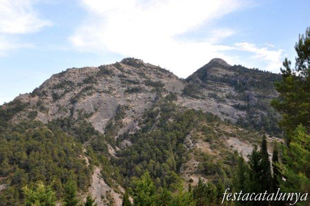 Bot - Roca Plana, l'Agulla i la Migdia