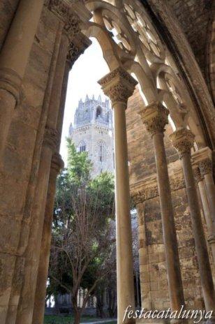 Lleida - Santa Maria de Lleida o la Seu Vella (Claustre)