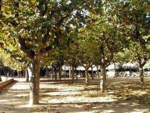 Capellades - Parc de la Font Cuitora