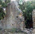 Ancosa: monestir i granja medieval, avenc, roure monumental i pou