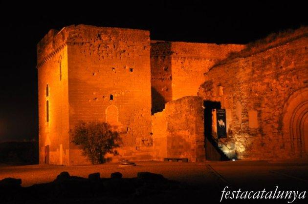 Lleida - Conjunt monumental de Gardeny