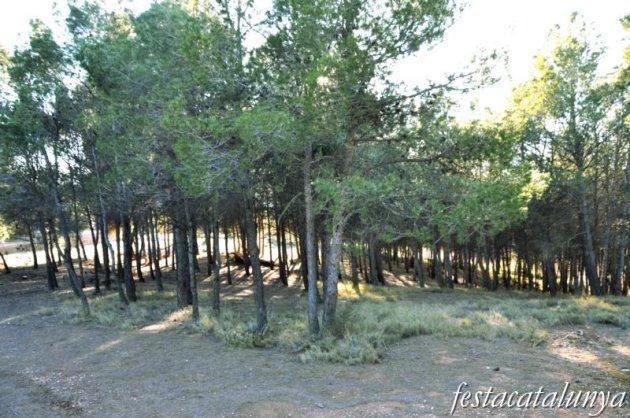 Pira - Zona d'acampada del turó de la bala