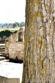 Sarral - Font de l'ermita dels Sants Metges