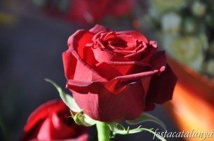 Súria - Sant Jordi
