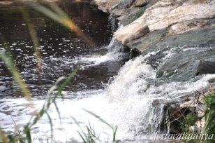 Barberà del Vallès - Riu Ripoll i el seu entorn