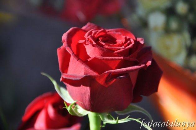 Gelida - Sant Jordi i Pasqua