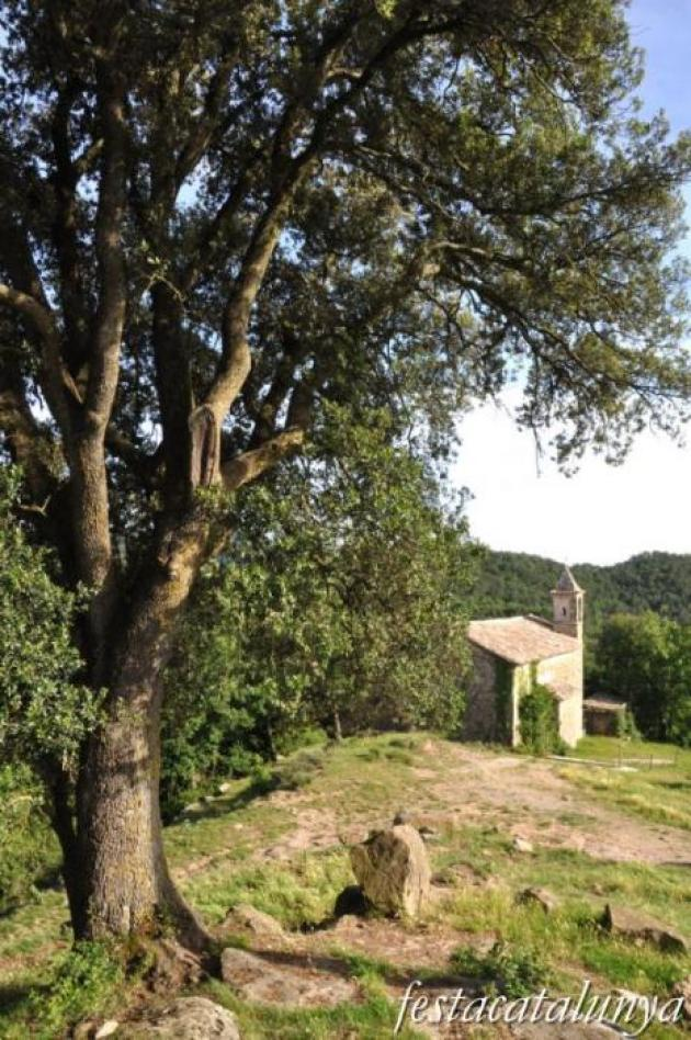 Sant Agustí de Lluçanès - Església de Sant Genís del Pi