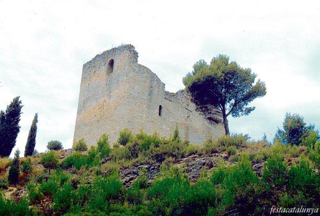 Santa Margarida de Montbui - Castell