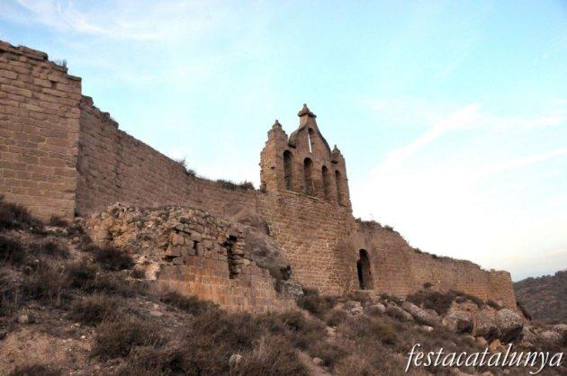 Sanaüja - Castell de Sanaüja