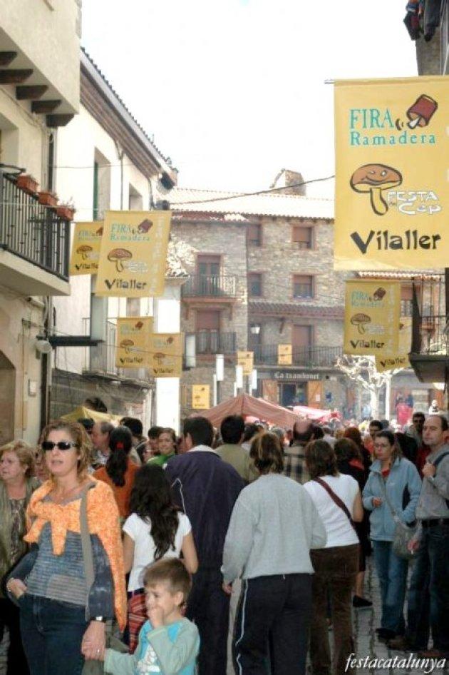 Vilaller - Fira Tots Sants - Festa del Cep