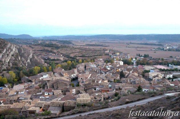 Sanaüja - Vistes panoràmiques des del castell