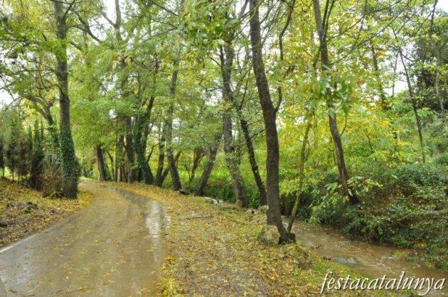 Llambilles - Camí de Sant Cristòfol, paisatges de suro