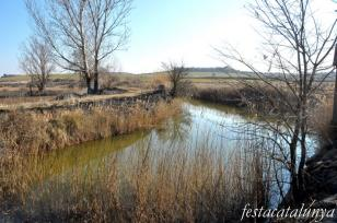 Preixana - Espai natural protegit secans de Belianes-Preixana