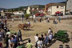 Santa Eulàlia de Riuprimer - Festa del Segar i el Batre (Foto: Adrià Costa)