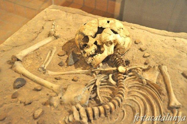 Moià - Museu arqueològic i paleontològic de Moià