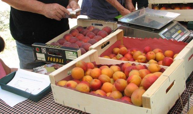 Piera - Mercat de la Fruita Dolça (Foto: Ajuntament de Piera)