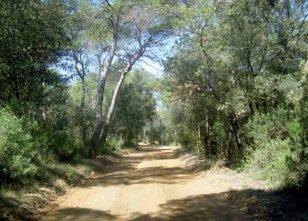 Santa Maria de Palautordera - Itineraris a peu i en bicicleta