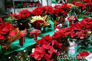 Santa Maria de Palautordera - És Nadal
