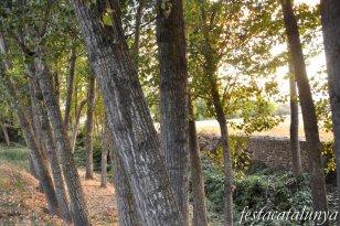 Ribera d'Ondara - Camp dels màrtirs del mas Claret