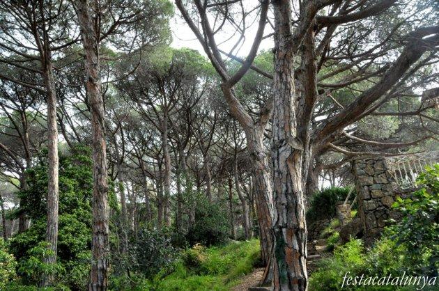 Caldes d'Estrac - Parc de can Muntanyà