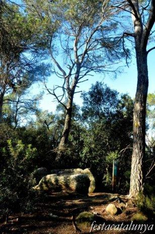 Roca del Vallès, La - Ruta Prehistòrica (Dolmen de can Gol II)
