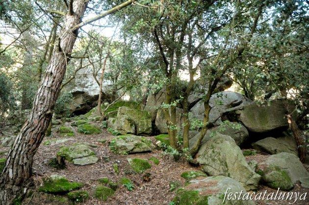 Roca del Vallès, La - Pedra de l'Escorpí