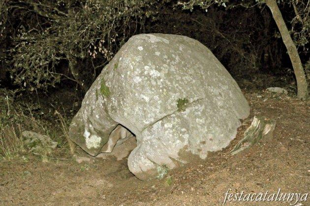 Roca del Vallès, La - Pedra Foradada de can Planes