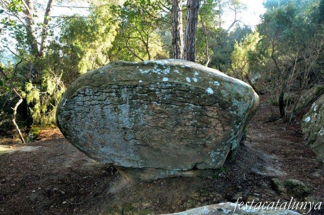 Roca del Vallès - Plat del Rei o del Molí