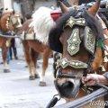 Festa Major d'Hivern de Sant Antoni de Vilamajor