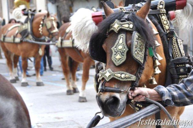 Sant Antoni de Vilamajor - Festa Major d'Hivern