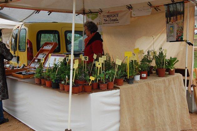 Salt - Fira de la Flor i el Planter (Foto: Oficina de Promoció de la Ciutat de Salt)