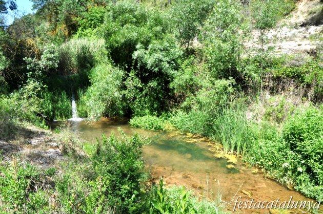 Orpí - Gorgs i pèlecs a la Riera de Carme