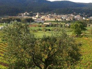 La Llacuna - Mostra d'Embotits i Vins d'Altura (Foto: Ajuntament de La Llacuna)