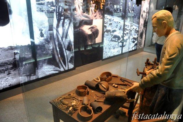 Montseny - Les Esquelles d'en Jaume