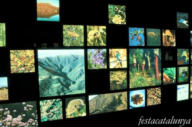 Montseny - Parc Natural del Montseny, un diàleg entre l'home i el territori