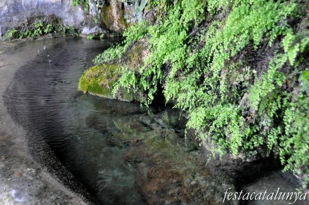 Bigues i Riells - L'Aigua gota a gota (Sant Miquel del Fai)
