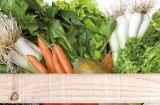 Jornades Gastron�miques de productes d'Horta del Maresme