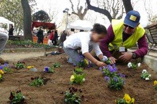 Mataró - Fira de l'Arbre i la Natura (Foto: Associació Amics de les Plantes)