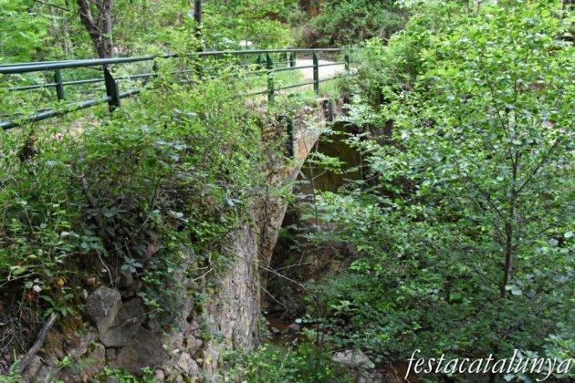 Maçanet de Cabrenys - Sant Miquel de Fontfreda - Pont dels Cantenys