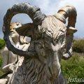 Les cabres de Cupido a Maçanet de Cabrenys
