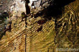 Maçanet de Cabrenys - Nucli antic