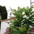 Ermita de Sant Ramon