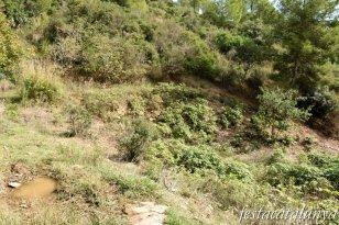 Viladecans - Can Trius - Font de can Preses
